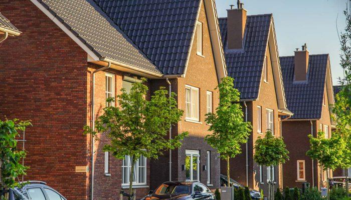Tuinbouwweg Waddinxveen